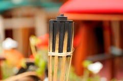 Antorcha del fuego Imagen de archivo libre de regalías
