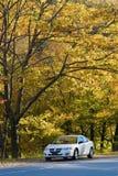 Antreiben der backroads Lizenzfreies Stockfoto