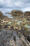 Antrim τοπίο ακτών στη βόρεια Ιρλανδία Στοκ εικόνα με δικαίωμα ελεύθερης χρήσης