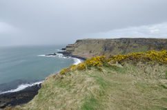 The Antrim Coast, Northern Ireland Stock Image