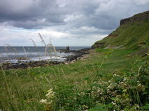 Antrim Coast, Northern Ireland. Coast during stormy weather in summer royalty free stock image