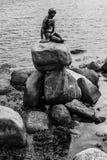 Antro pequeno famoso lille Havfrue da estátua da sereia de Copenhaga, Dinamarca Fotos de Stock Royalty Free