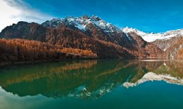 Antrona Valley - Lake Alpine Horse. Cheggio Location: lake views Horses Alp, Antrona Valley - Piedmont, Italy royalty free stock photography
