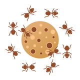 Ants. A group of ants working together design Royalty Free Stock Photography