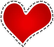 Ants around red heart Stock Image