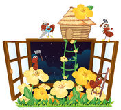 Ants, bird house and window. Illustration of ants, bird house and window on white Stock Images