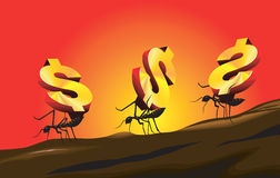 Ants carrying dollar Stock Photography