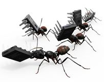 Ants Carrying Microchips Stock Photos