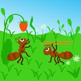 Ants collect strawberries - vector illustration, eps royalty free illustration