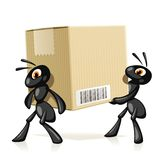Ants e-Mail Stock Image
