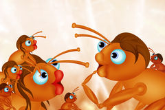Ants family Royalty Free Stock Photos