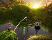 Ants fishing on sunrise, ant tales Stock Images