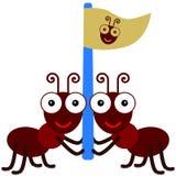 Ants and a flag Stock Photos