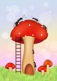 Ants on mushroom Royalty Free Stock Photo