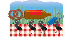 Ants at a Picnic. Ants carrying off food from a picnic Stock Images