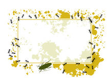 Ants and splatter frame Stock Photo