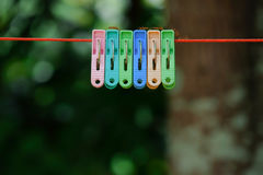 Ants walk around on ropes and clothespin colors. Stock Image