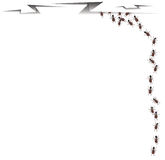 Ants Walking Into A Crack Stock Photography