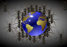 Ants and world Stock Photography