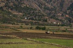 Antsirabe-Ambositra Στοκ φωτογραφία με δικαίωμα ελεύθερης χρήσης