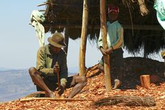 Hard working poor malagasy man. ANTSIRABE, MADAGASCAR, SEPTEMBER 2014, Unknown malagasy man working hard with wood- poverty royalty free stock photos