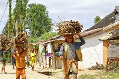 Poor malagasy people carrying branches on heads - poverty. ANTSIRABE, MADAGASCAR, SEPTEMBER 2014, Unknown malagasy people carrying branches on heads - poverty Stock Photography