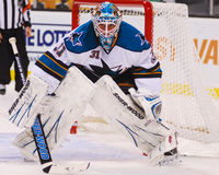 Antti Niemi, San Jose Sharks Fotografia de Stock Royalty Free