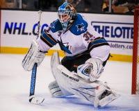 Antti Niemi, San Jose Sharks Στοκ εικόνα με δικαίωμα ελεύθερης χρήσης