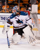 Antti Niemi San Jose Sharks Royalty Free Stock Image