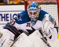 Antti Niemi San Jose Sharks Royalty Free Stock Photography