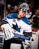 Antti Niemi San Jose Sharks Stock Image