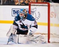 Antti Niemi San Jose Sharks Royalty Free Stock Images