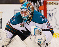 Antti Niemi San Jose Sharks Stock Photo