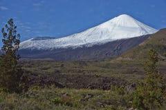 Antuco Volcano in Laguna de Laja National Park, Chile Stock Photo
