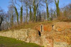 Antvorskov ruin. Stock Image