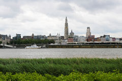Antwerp Fotografering för Bildbyråer