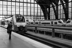 Antwerp centralstation Royaltyfri Bild
