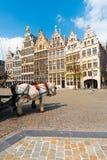 Antwerp GuildHouses  Horses Daytime V Royalty Free Stock Photo