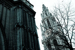 antwerp katedra Obraz Stock