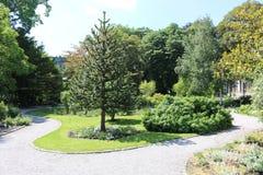 Antwerp ogródy botaniczni Obraz Royalty Free