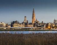 Antwerp stad, Belgien JANUARI, sikt 8 2015 från flodbanken, Antwerp, Belgien JANUARI, 8 2015 fotografering för bildbyråer