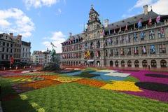 Antwerp urząd miasta, Stathuis/ Zdjęcie Royalty Free