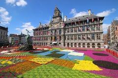 Antwerp urząd miasta, Stathuis/ Obrazy Stock