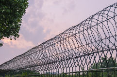Anty - kradzieżowa sieć na ścianie Fotografia Royalty Free