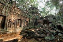 Antyczna Khmer architektura Ta Prohm ?wi?tynia przy Angkor, Siem Przeprowadza ?niwa, Kambod?a Zdjęcie Stock