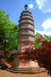 antyczna pagoda Zdjęcie Royalty Free