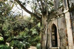 Antyczne kamień ruiny w obfitolistnym ogródzie Sintra zdjęcie stock