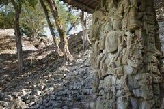 Antyczne ruiny Copan,  Obraz Stock