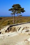 Antyczne ruiny Kamiros, Rhodes - Zdjęcie Royalty Free
