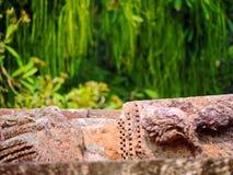 Antyczne ruiny, natura, słońce świątynia, Konark Odisha Fotografia Royalty Free